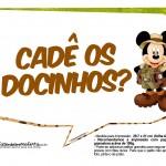 Plaquinhas Mickey Safari 4