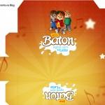 Caixa Baton Alvin e os Esquilos Desenho