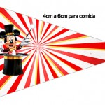 Bandeirinha Sanduiche 5 Mickey Circo