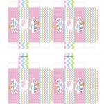 Caixa Baton para Pascoa - Gratis para Imprimir Rosa