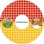 CD DVD Festa Junina