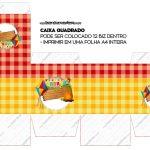 Caixa Bis ou Cubo Festa Junina