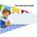Bandeirinha Sanduiche Festa Junina Azul 2