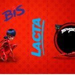 Bis Duplo 3D Miraculous Ladybug