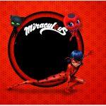 Caixa Bombom Miraculous Ladybug 2