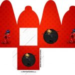Caixa com foto Miraculous Ladybug