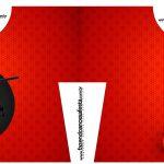 Convite Camisa Miraculous Ladybug