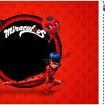 Convite Ingresso Miraculous Ladybug