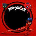 Convite Miraculous Ladybug