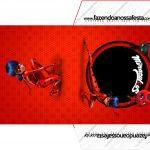 Envelope CD DVD Miraculous Ladybug