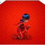 Envelope Convite Miraculous Ladybug