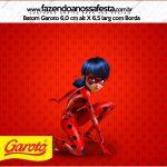 Rotulo Baton Garoto Miraculous Ladybug