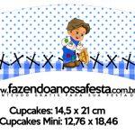 Saias Wrappers para Cupcakes Kit Festa Junina Azul