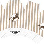 Caixa China in Box Cavalo