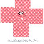 Caixa Cubo Dia dos Namorados Kit Presente Mickey e Minnie Vintage Vermelho - Fundo