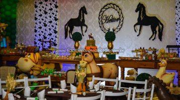 Decoração Ideias para Festa Cavalos 2