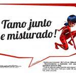 Plaquinha Divertidas Ladybug 4