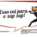 Plaquinhas Cat Noir 6