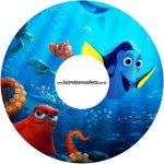 CD DVD Procurando Dory
