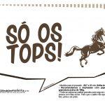 Plaquinhas Cavalos 10