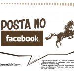 Plaquinhas Cavalos 13