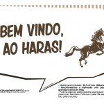 Plaquinhas Cavalos 4