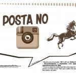 Plaquinhas Cavalos 7