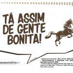 Plaquinhas divertidas Cavalos 3