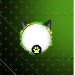 Bala personalizada Miraculous Cat Noir