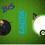 Bis Duplo Miraculous Cat Noir