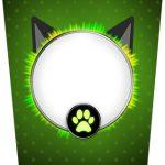 Bisnaga Flip Top Kit Festa Miraculous Cat Noir