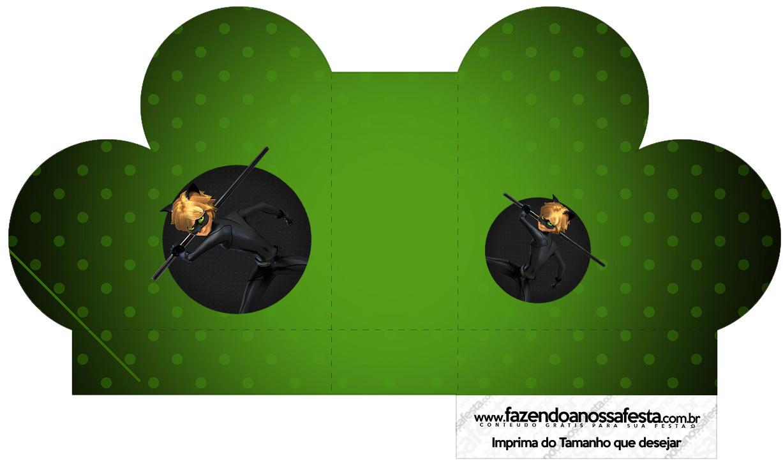 Caixa Coracao Miraculous Cat Noir