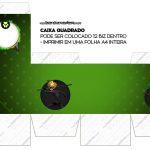 Caixa Cubo Miraculous Cat Noir