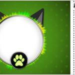 Convite Ingresso Kit Festa Miraculous Cat Noir