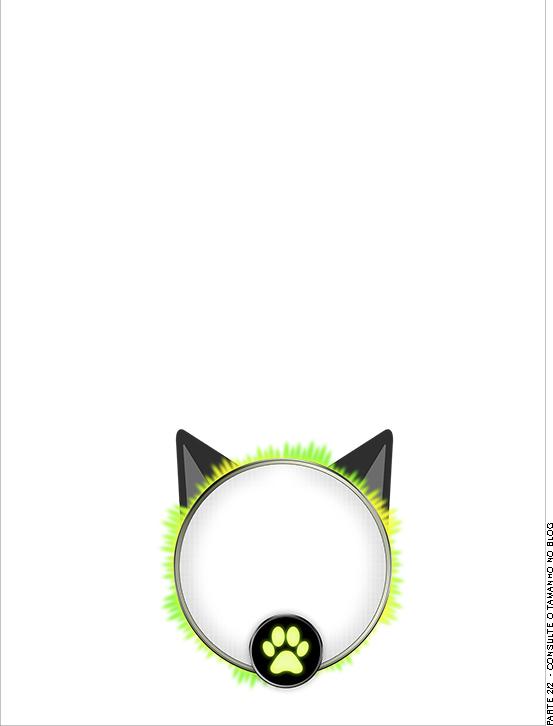 Convite Passaporte - parte de dentro Kit Festa Miraculous Cat Noir