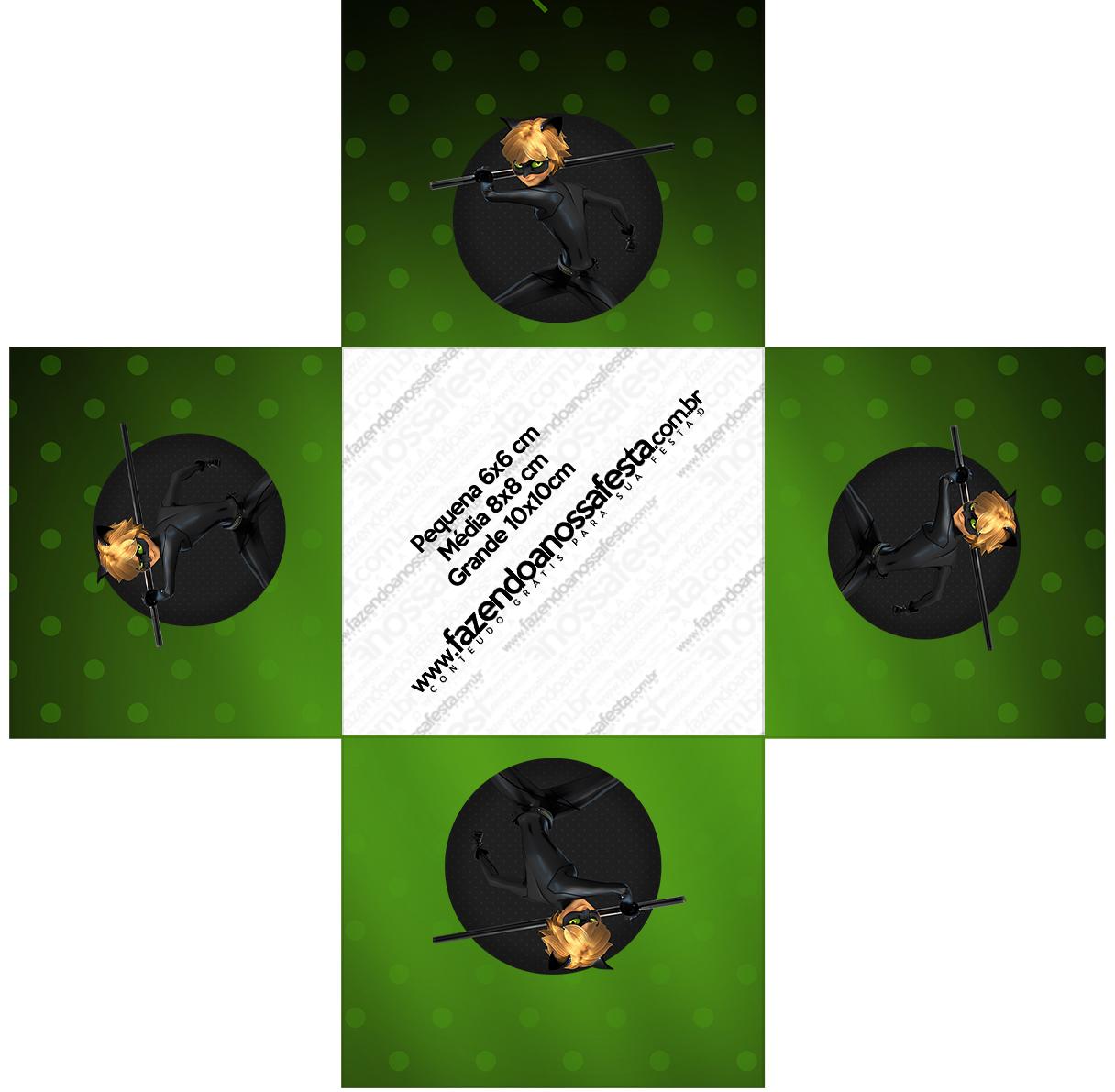 Forminhas Docinhos Quadrada Miraculous Cat Noir