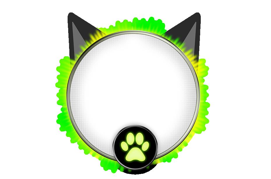 Frame Kit Festa Miraculous Cat Noir