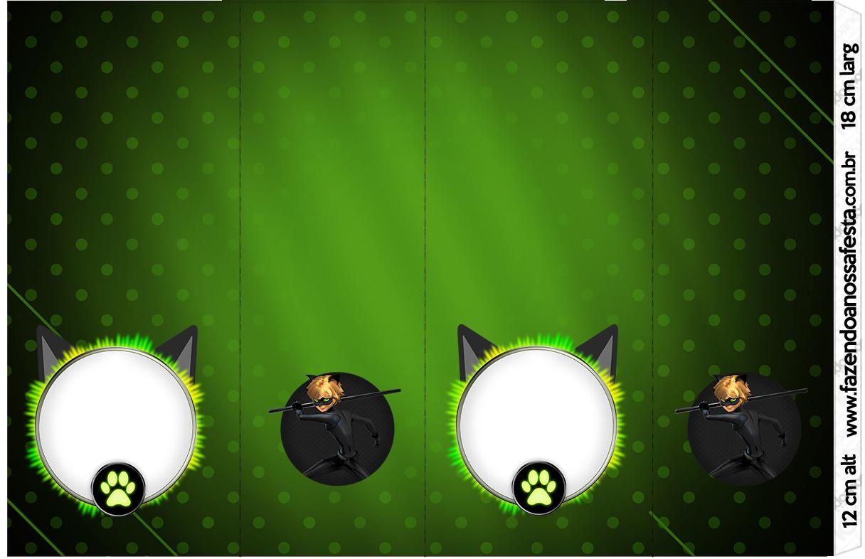 Nescauzinho Miraculous Cat Noir