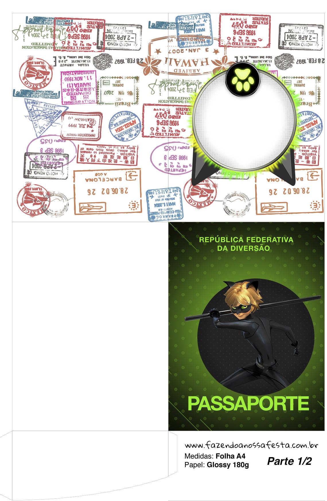 Passaporte Miraculous Cat Noir