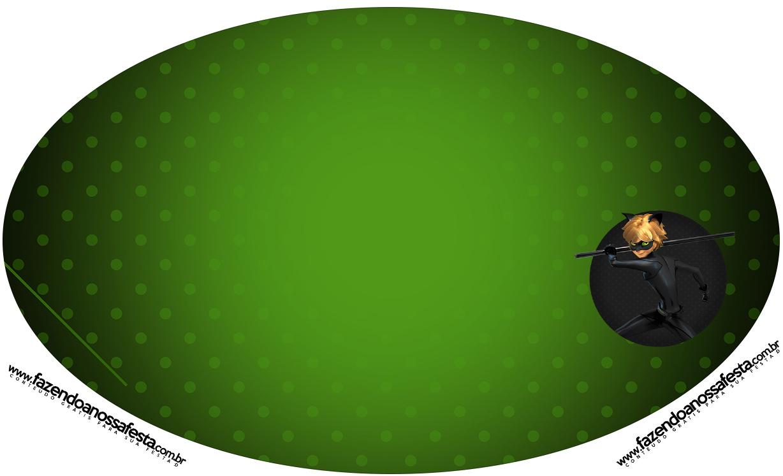 Placa Elipse Miraculous Cat Noir