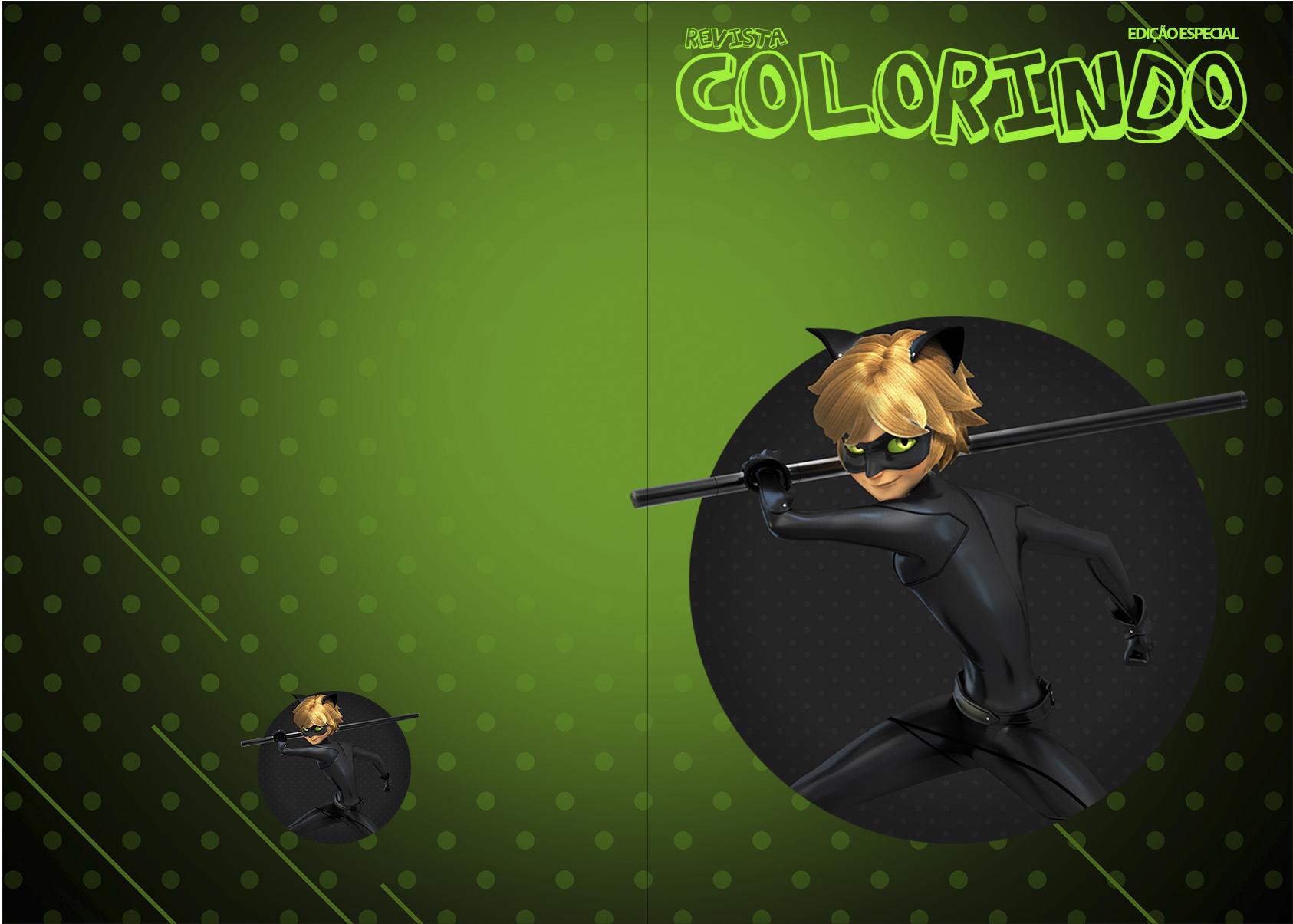 Revista Colorindo Miraculous Cat Noir
