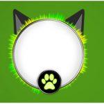 Rotulo Agua Miraculous Cat Noir