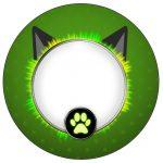 Toppers, Tubetes e Latinhas Miraculous Cat Noir