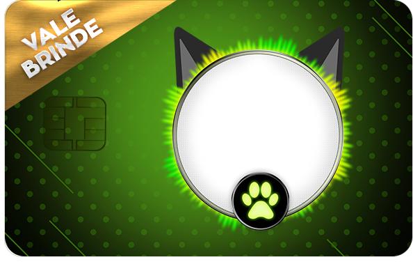 Vale Brinde Miraculous Cat Noir