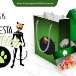 Kit Festa Miraculous Cat Noir Grátis