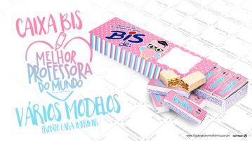 Caixa Bis Dia dos Professores Corujinha Rosa Modelo