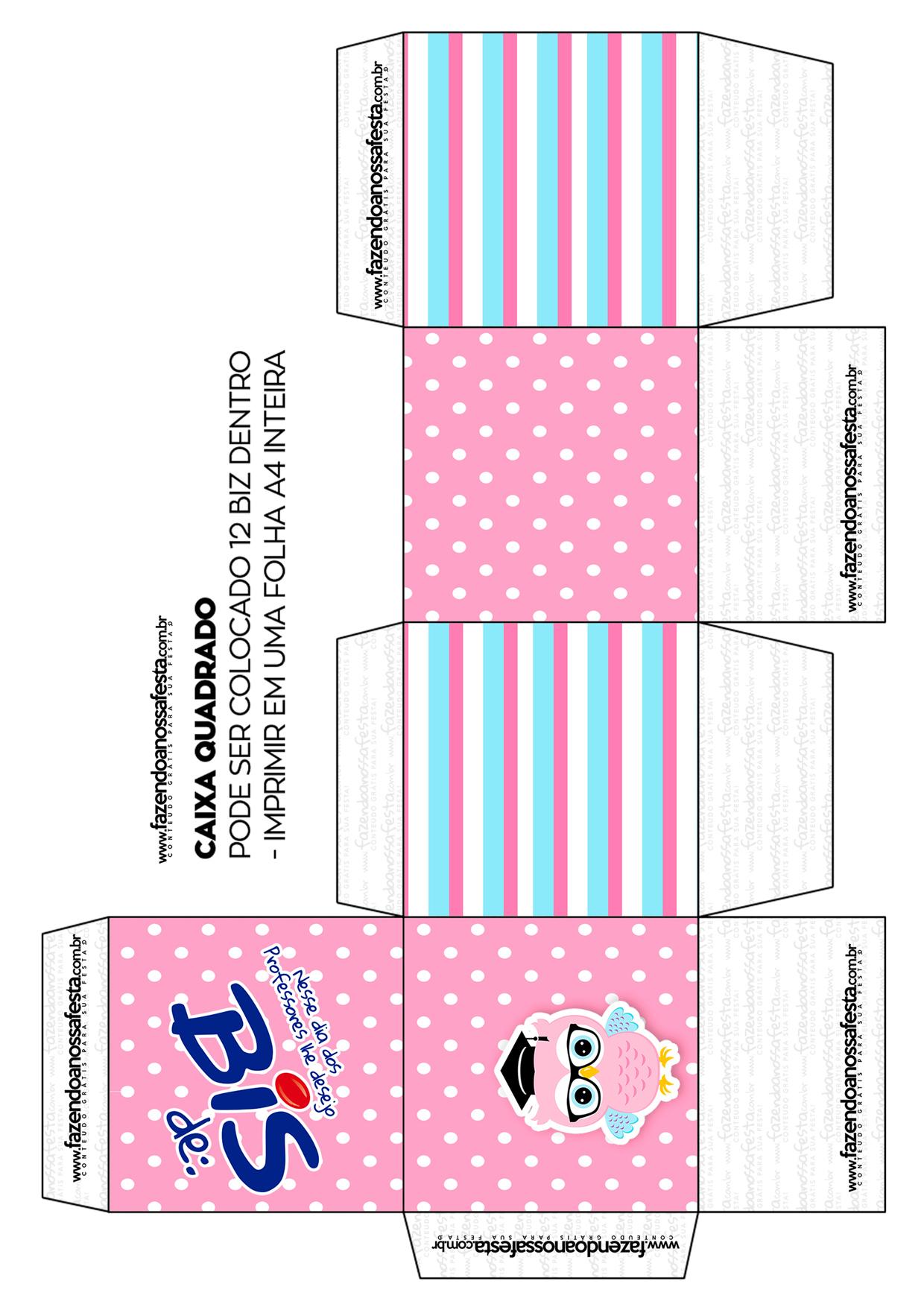 Caixa Bis Dia dos Professores Corujinha Rosa Quadrada Folha A4