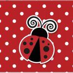 Cartão Joaninha