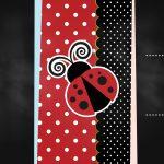 Convite Chalkboard Joaninha