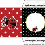 Envelope CD DVD Joaninha